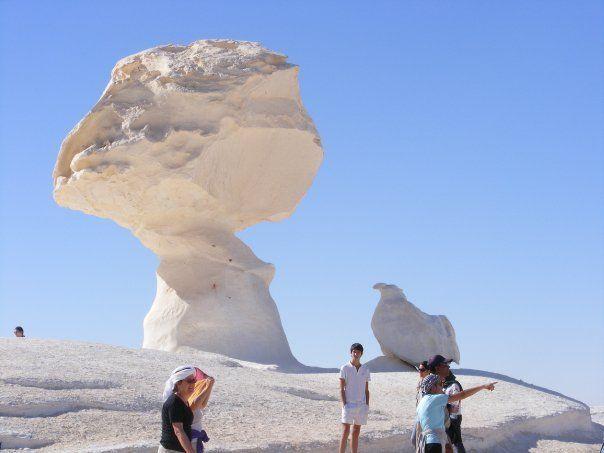 Enjoy White Desert Safari Tours in Egypt with best safari equipment and services. All Tours Egypt offer best Egypt Safari Tours with best prices http://alltoursegypt.com/tours/cairo_siwa_baharyia_safari_tour.html