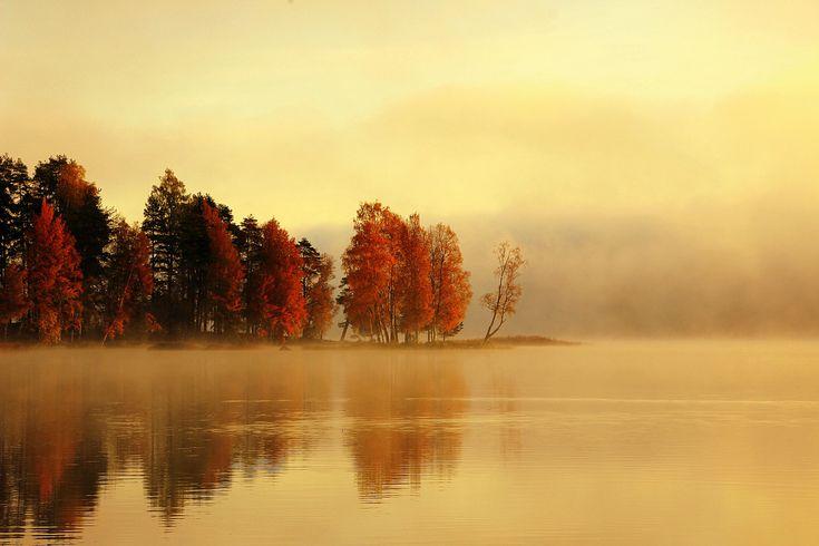 late autumn in Finland [OC] [5133×3422]