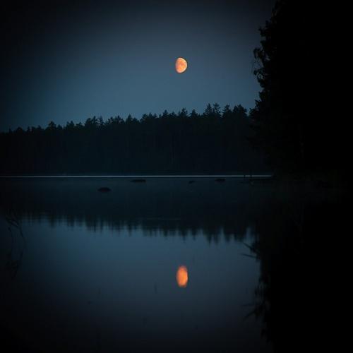 Nocturne  Tommola Heinola Finland    photo by miemo flickr