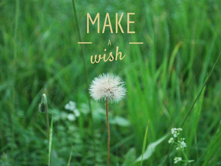 www.Lunainviaggio.com wandering mind  make a wish
