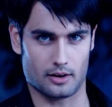 Vivian Dsena he plays the role of Superstar RK in Madhubala - Ek Ishq Ek Junoon on Colors TV.