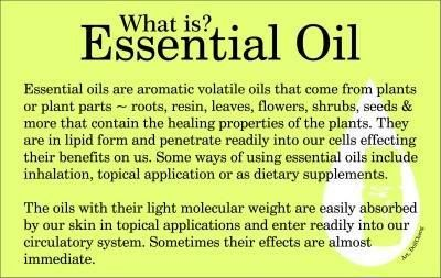 what is essential oil - 12 Oils of Ancient Scripture