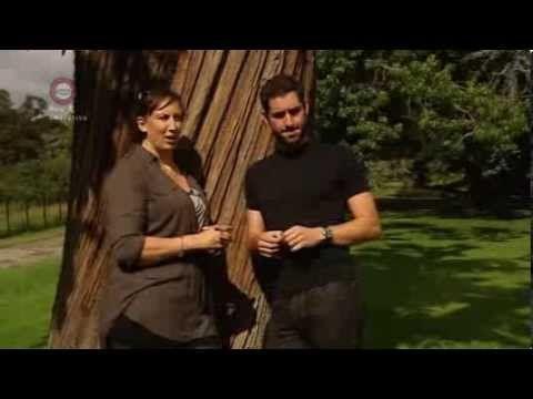 "Miranda Hart & Tom Ellis discuss the relationship between Miranda and Gary on PBS series ""Miranda"" - what fun!"