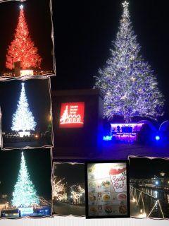 函館の12月イベント クリスマスファンタジー  お友達からスープバーの券をもらい早速行ってきました  18時の点灯式を目指し向かったものの駐車場満車で花火を車内で見るハメに笑  何色にも変化するツリー その中でも時間限定 プレミアムレッドツリーは 18:30  19:30  20:30  から15分間だけの貴重な輝き是非狙って観て下さい  今年も寒さに備えスキーウエアにニット帽 手袋で言ったはずが寒さに負け早く帰ろうの嵐  はしゃいでたのはママだけでした( )   #函館#クリスマス#ツリー#イルミネーション#プレミアム#花火#   tags[北海道]