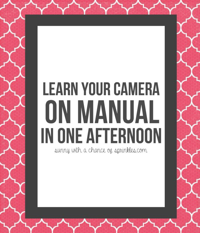 Shooting in Manual for Beginners-- Learn your camera on manual in one afternoon #photography #photography101 #beginners #manual #photos #learnyourcamera #DSLR