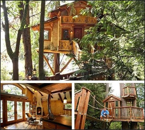 Best Tree Houses Images On Pinterest Treehouses Trees - Contemporary banyon treehouse california