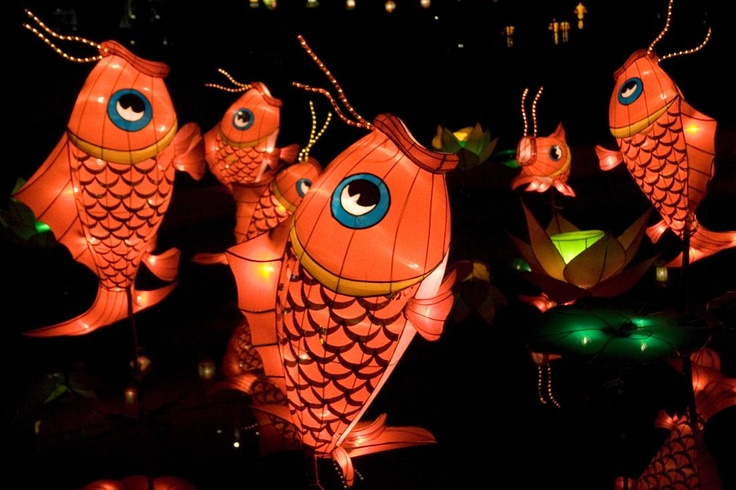 Fish in China represent the abundance of life.  More info@http://www.chinatraveldesigner.com/travel-guide/culture/chinese-festival.html