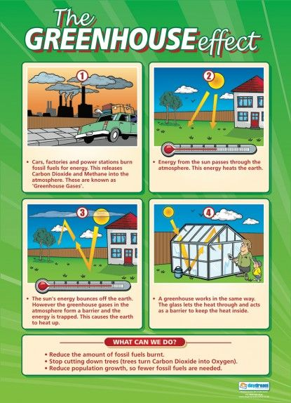 The Greenhouse Effect Poster