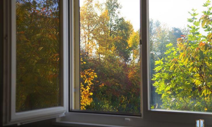 Fall through a window - Őszi ablak kép