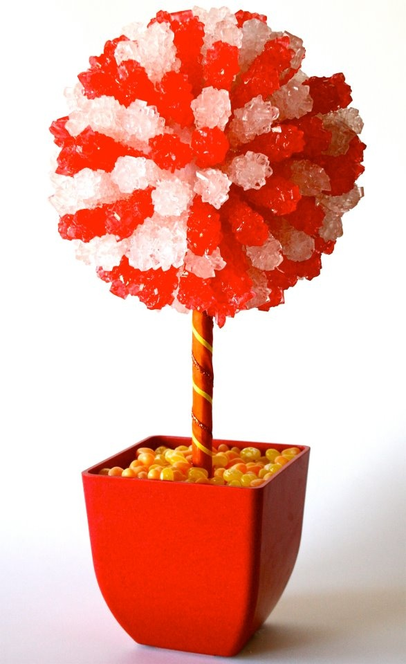 Unique candy topiary ideas on pinterest chocolate