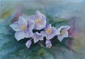 'Whjte Flowers' by Mel Perera http://artdiscoveredonline.co.uk/art-gallery/white-flowers/