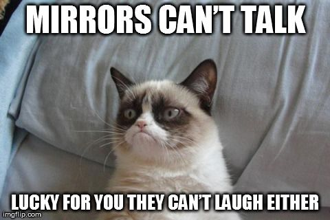 Mirrors can't talk, lucky for you they can't laugh either. I'm pretty sure this is from World of Warcraft