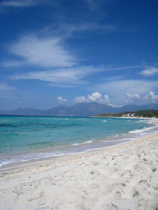 Plage de Saleccia//La plage de Saleccia est située en Corse, dans l'Agriate, territoire dont l'origine du nom évoque les fertiles « terres agricoles », qui n'ont jamais rien d'un « désert ». Elle est considérée comme l'une des plus belles plages de l'île. Wikipédia