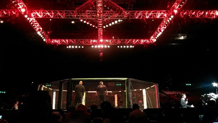 Cageside at BAMMA 11