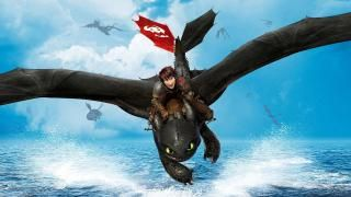 How To Train Your Dragon Jak Vycvicit Draka 2010 Filmy How