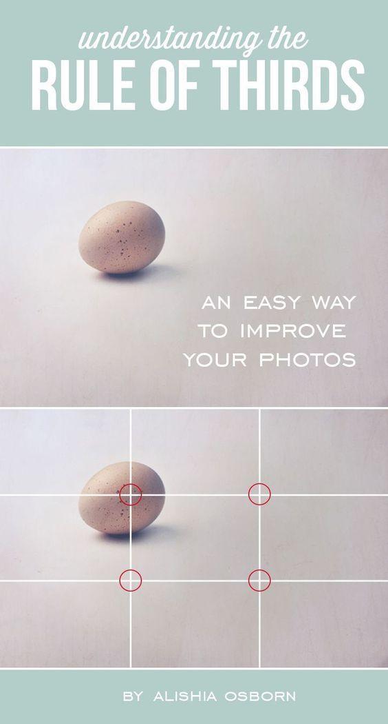 The Best Photography Books - Shotkit