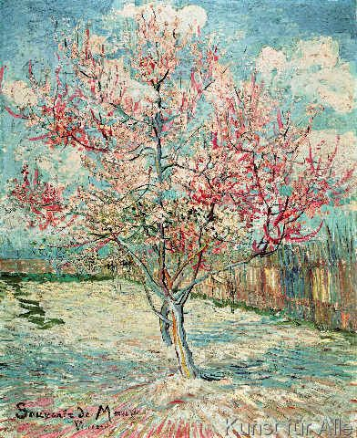 Pink Peach Tree in Blossom (Reminiscence of Mauve), Vincent van Gogh, oil on canvas, 73.0 x 59.5 cm, Arles, March 1888, Kroller-Muller Museum, Otterlo, Netherlands,