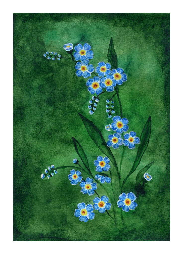 Forget-me-not flower #watercolour #forgetmenot #flowers #blueflowers