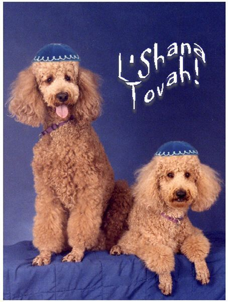 rosh hashanah its significance laws and prayers