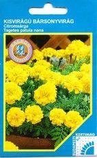 Kisvirágú Bársonyvirág citromsárga
