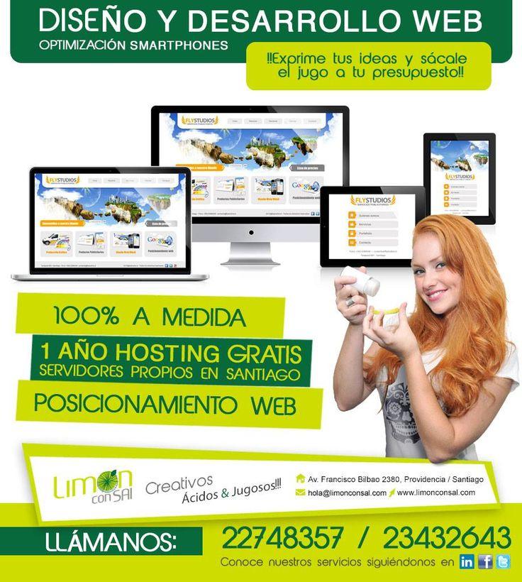Diseño Web 100% a medida, hosting gratis por 1 año en servidores propios.