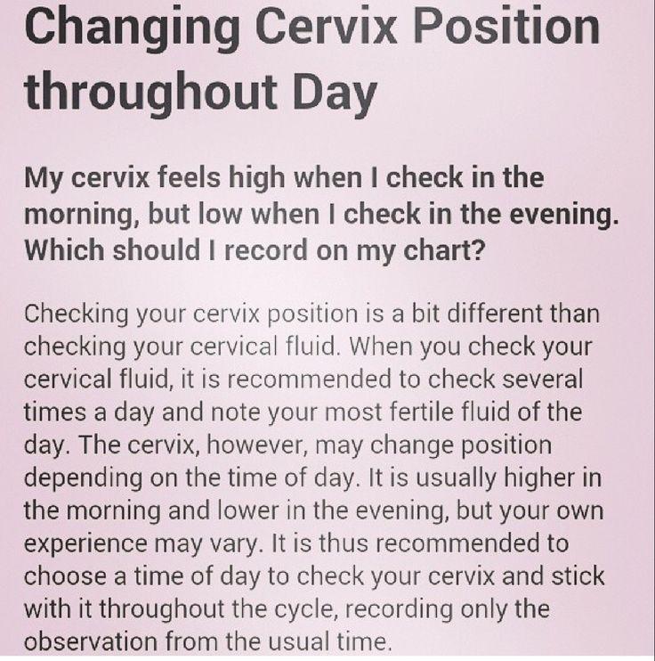 Ttc -Cervix Position  Get Pregnant  Ttc  Getting