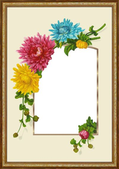 125 Best Images About Photo Frames Borders On Pinterest