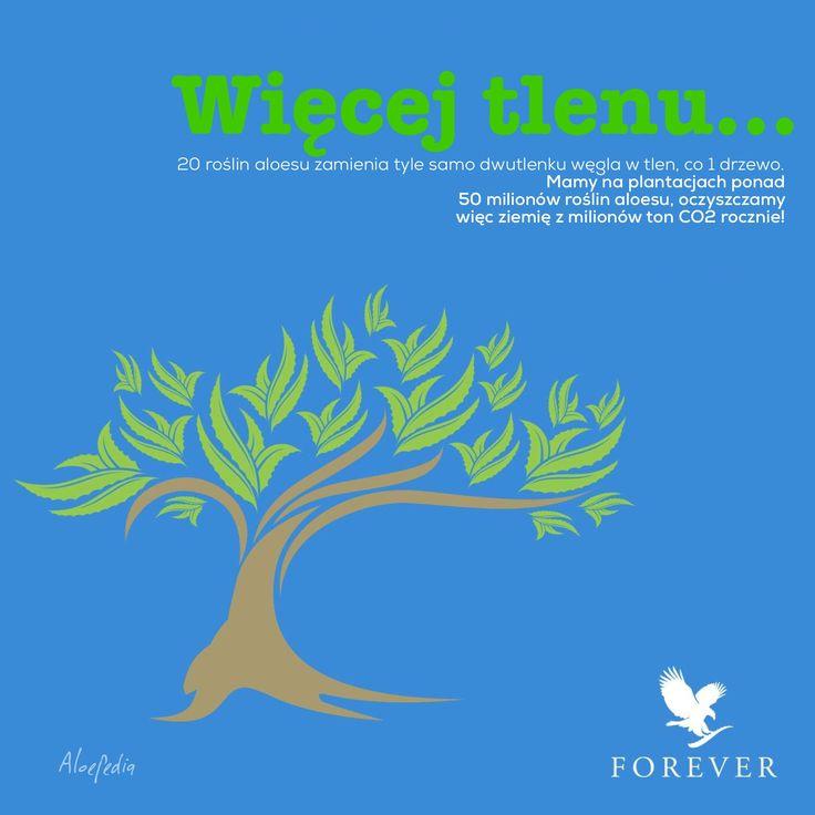 Nasz aloes to także więcej tlenu dla całej planety. Forever, na zawsze.