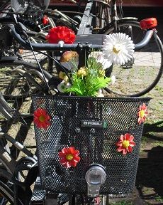 Pimp your Fahrradkorb! #Münster #Fahrrad