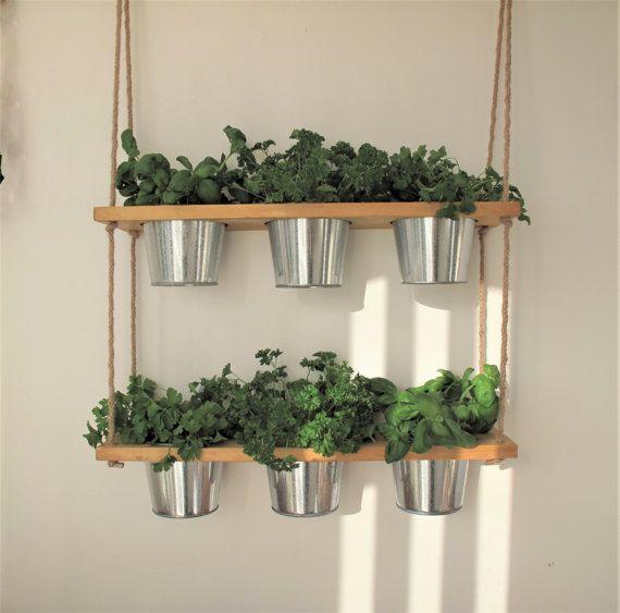 Hanging Shelf Kitchen Herb Garden Windowsill Herb And Spice