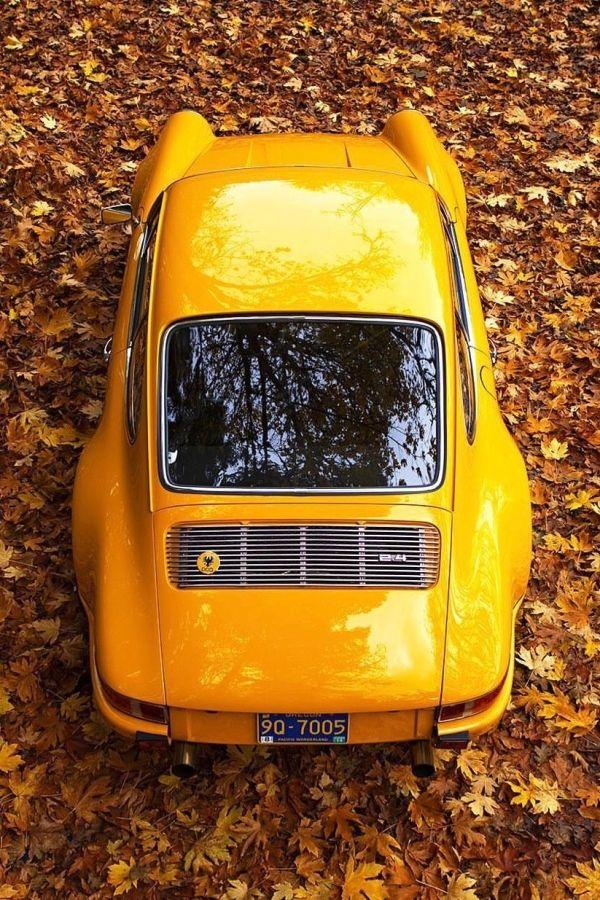 Sapito del auto