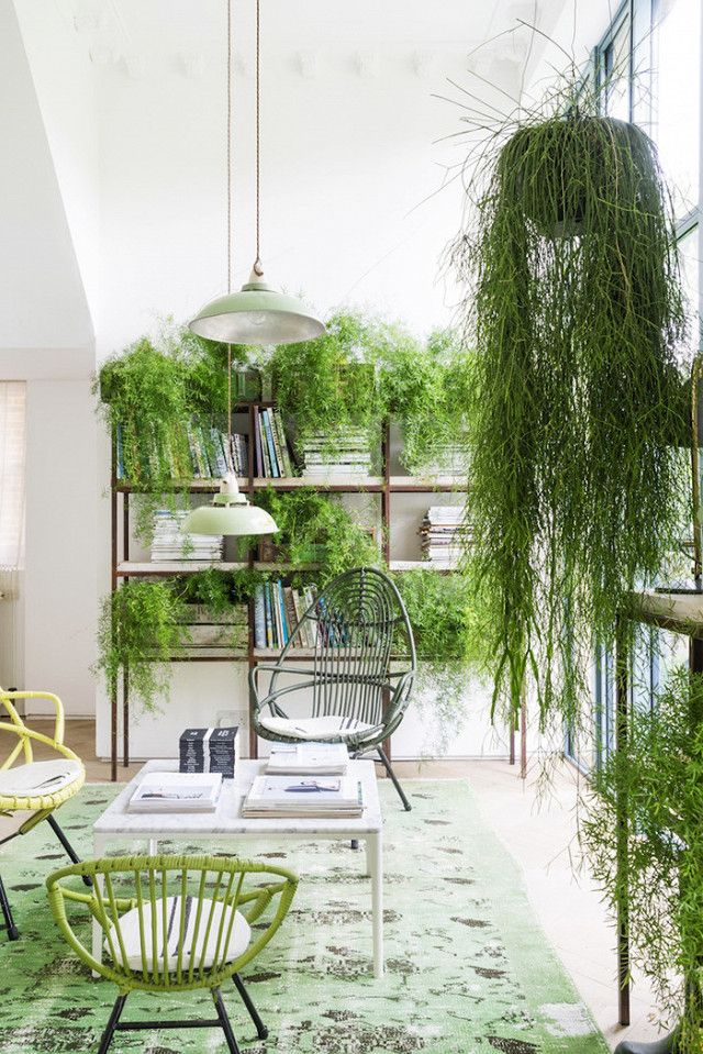 Indoor outdoor living space with woven chairs, a large area rug, and hanging greenery