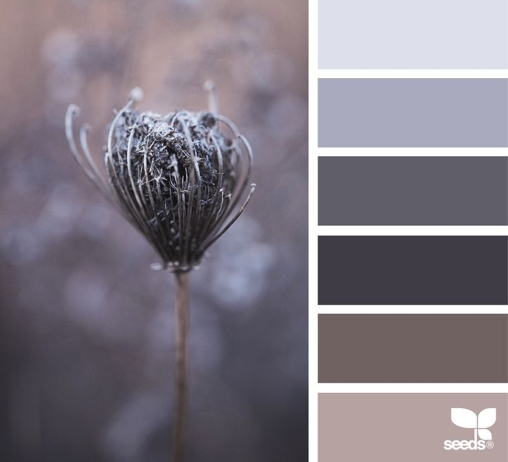 nature tones | design seeds | Bloglovin'