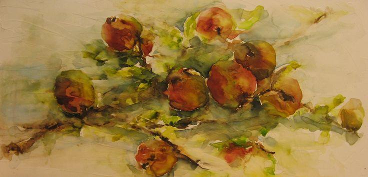 Appeltjes aan tak, aquarel op doek