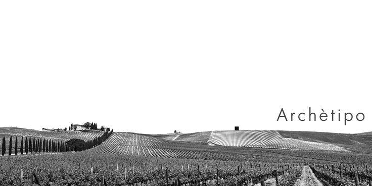 ARCHETIPO_ La cantina itinerante, un percorso a ritroso dentro la verità del vino. Mattia Scaffei