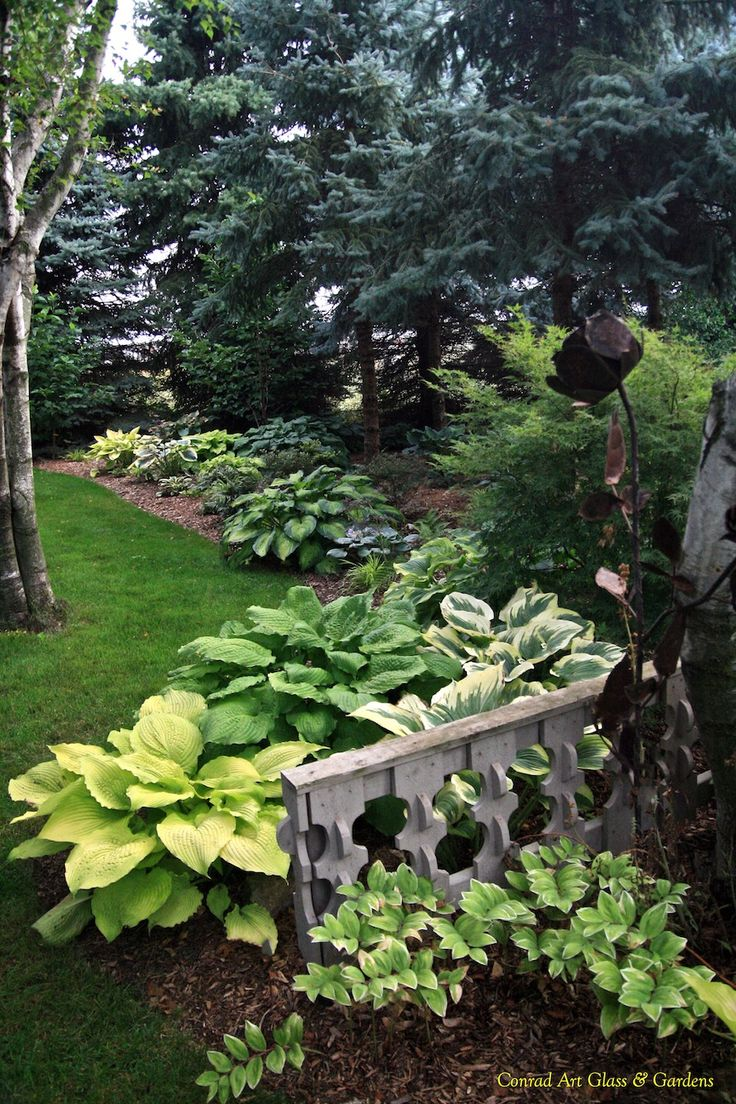 best images about gardening gardens sheds and sun beautiful hosta garden