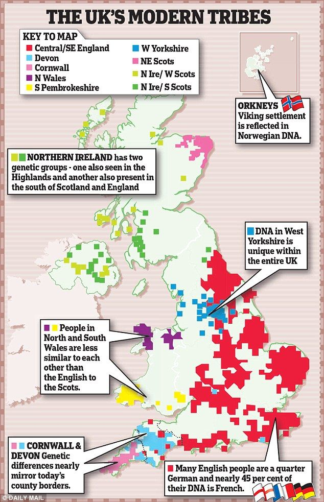 The study found that Britain can be divided into 17 distinct genetic 'clans', as shown in the map above