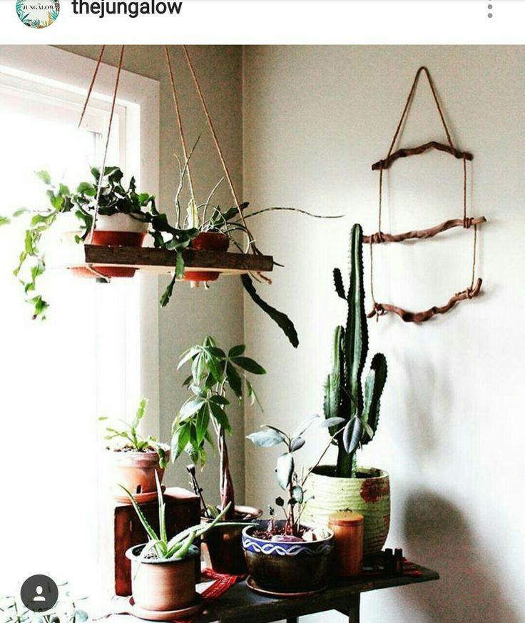 Indoor Gardening, Plants Indoor, Potted Plants, Container Gardening,  Apartment Gardening, Houseplants, Stick Art, Horticulture, Botany