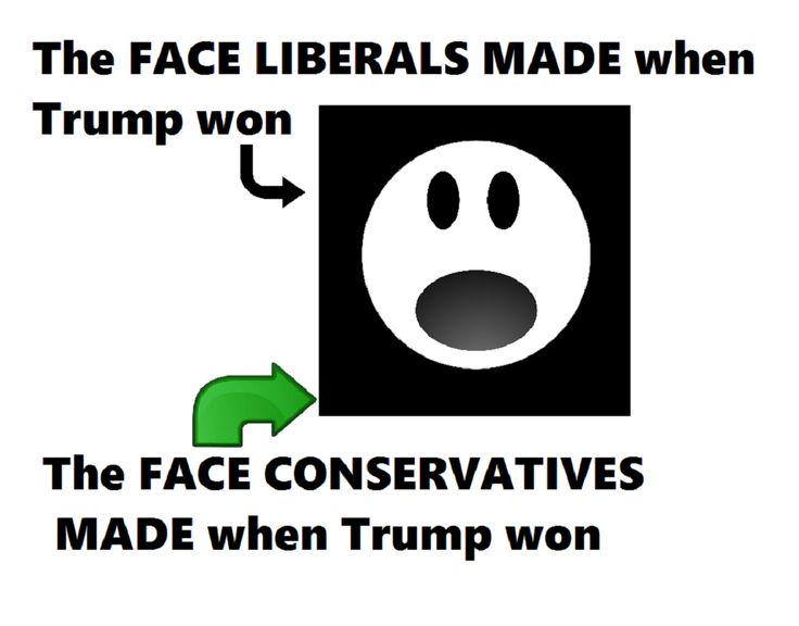 THE FACE LIBERALS AND CONSERVATIVES MADE WHEN TRUMP WON MEME SHOCK DUMBFOUNDED