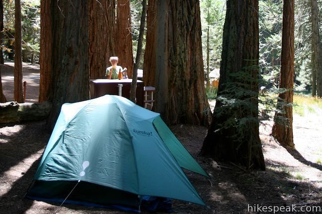 Read more about Atwell Mill Campground and Cold Springs Campground in Sequoia National Park