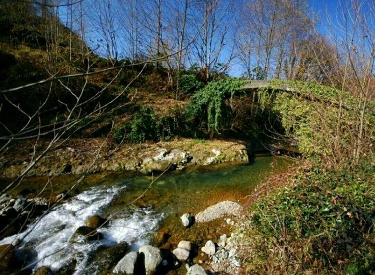 Bridge-Şairler bridge-Çayeli-Rize