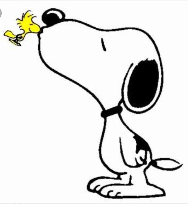 Die passende Nase für Snoopys Knutscher!