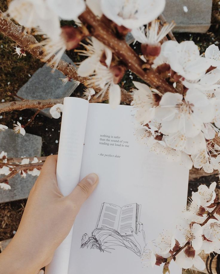 """2,586 lượt thích, 19 bình luận -  linh (@woodlandspirits) trên Instagram: """"the story behind this photo: my English teacher, who, by the way, is a reader and eccentric and…"""""""