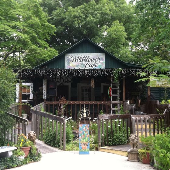 Wildflower Cafe. Mentone, AL Our favorite place to eat! Live bluegrass, southern food and good friends! We try and go once a month!