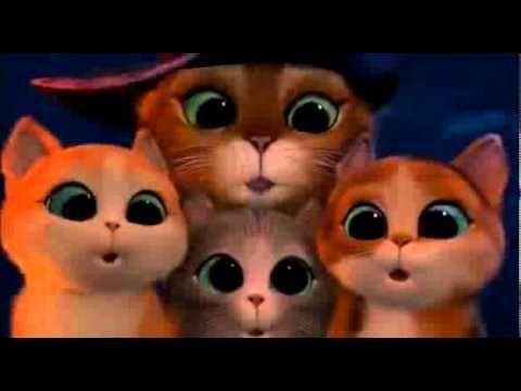 Le Chat Potté - Film Complet Français