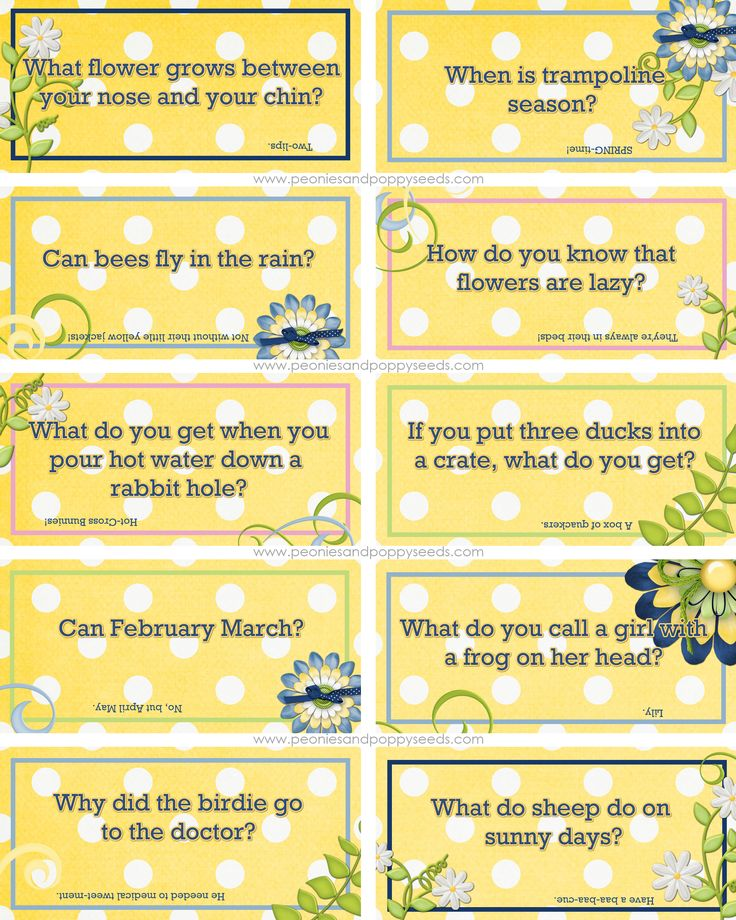 Spring School joke lunch notes