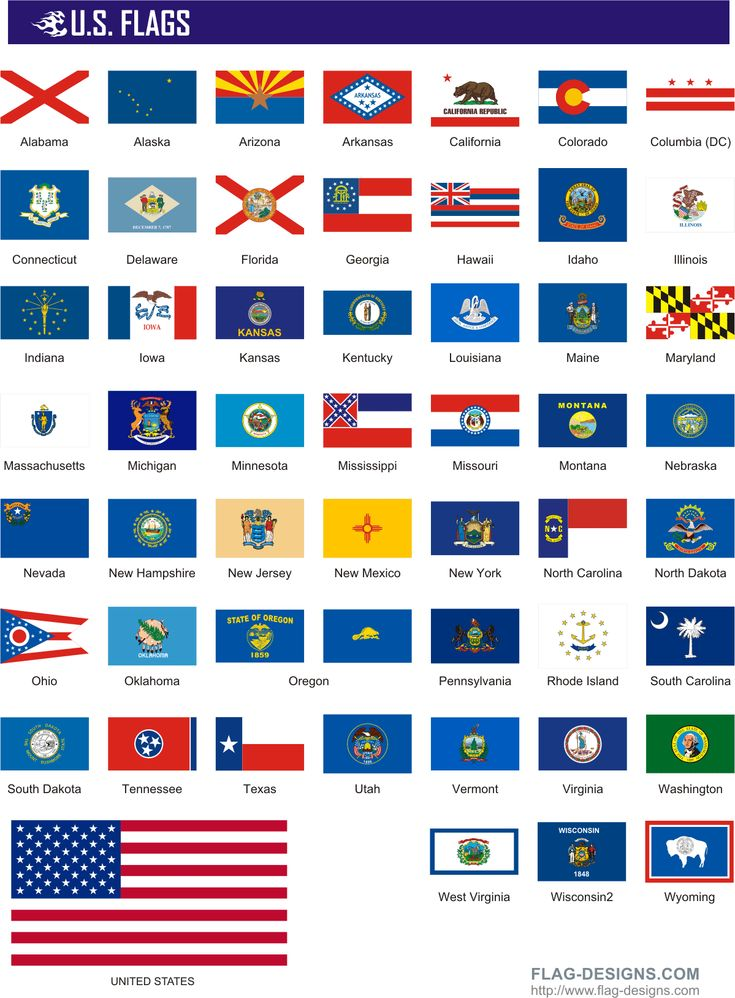 State Flags | 50 U.S. Flags - vector clipart, vector images