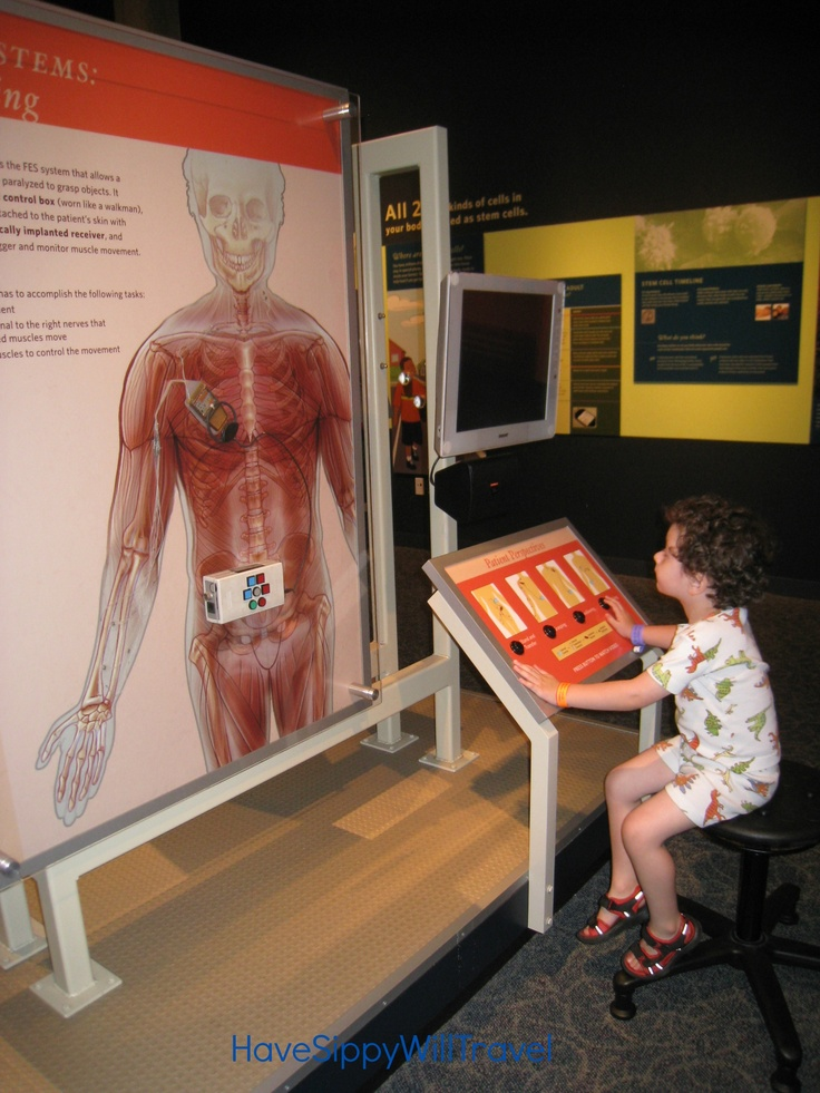 5 Fun Educational Vacation Destinations for Kids