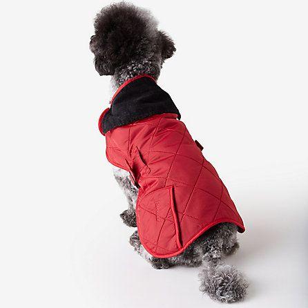 For Pup: Barbour Liddesdale Dog Coat | Steven Alan
