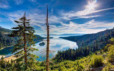 Scarica sfondi usa, paesaggio, foresta, ca, colline, lago, lake tahoe